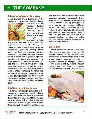 0000101444 Word Template - Page 3