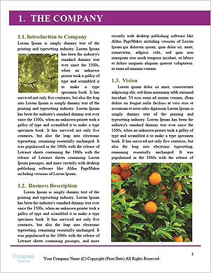 0000101447 Word Template - Page 3