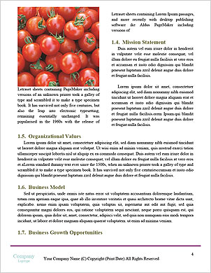 0000101447 Word Template - Page 4