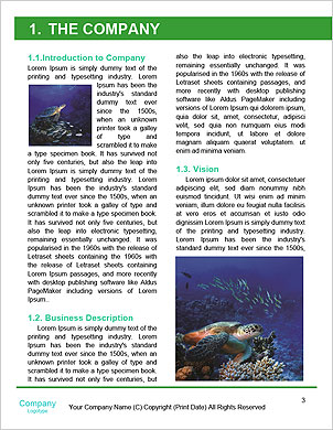 0000101448 Word Template - Page 3