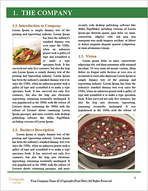 0000101460 Word Template - Page 3