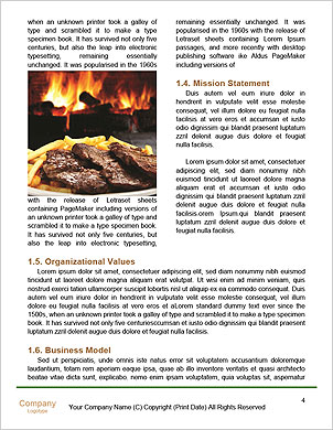 0000101472 Word Template - Page 4