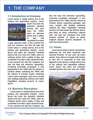 0000101473 Word Template - Page 3