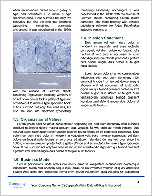 0000101473 Word Template - Page 4