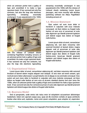 0000101474 Word Template - Page 4