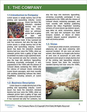 0000101480 Word Template - Page 3