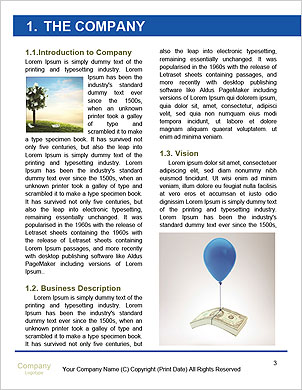 0000101481 Word Template - Page 3