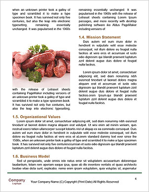 0000101490 Word Template - Page 4