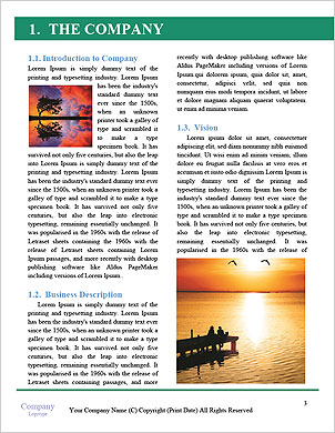 0000101493 Word Template - Page 3