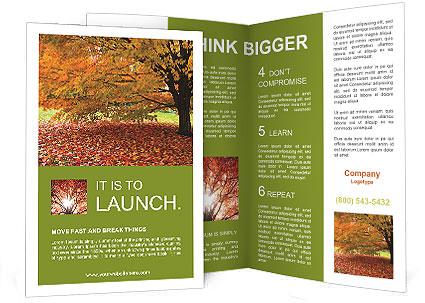 0000101501 Brochure Template