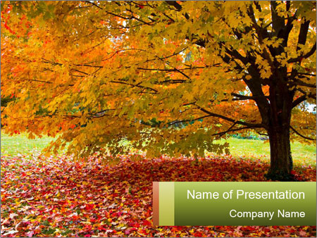0000101501 PowerPoint Template