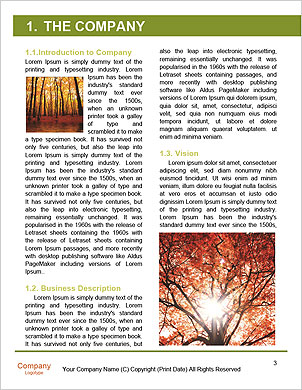 0000101501 Word Template - Page 3