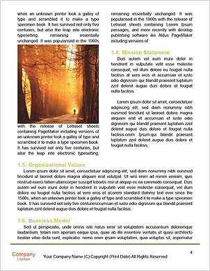0000101501 Word Template - Page 4