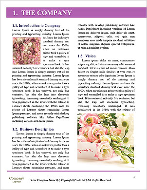 0000101526 Word Template - Page 3