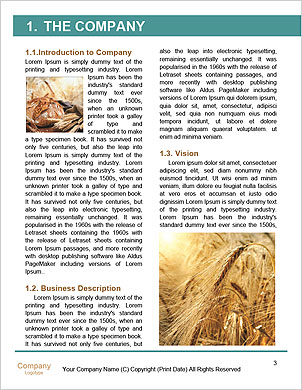 0000101527 Word Template - Page 3