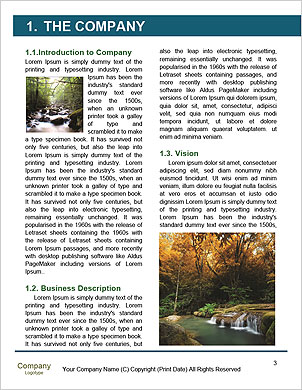 0000101531 Word Template - Page 3