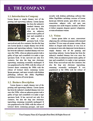0000101532 Word Template - Page 3