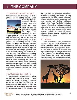 0000101534 Word Template - Page 3
