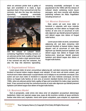 0000101534 Word Template - Page 4