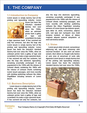 0000101535 Word Template - Page 3