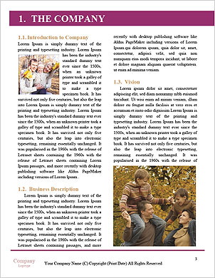 0000101536 Word Template - Page 3