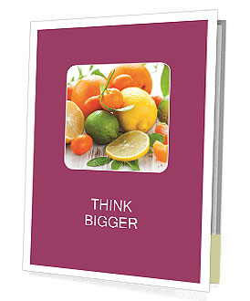 0000101537 Presentation Folder
