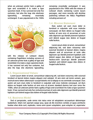0000101537 Word Template - Page 4