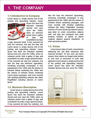0000101538 Word Template - Page 3