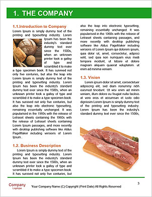 0000101544 Word Template - Page 3