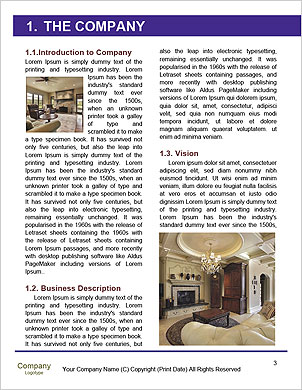 0000101545 Word Template - Page 3