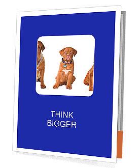 0000101556 Presentation Folder