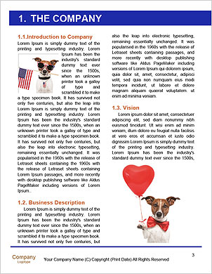 0000101556 Word Template - Page 3