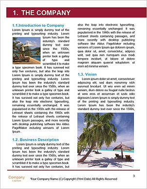0000101557 Word Template - Page 3