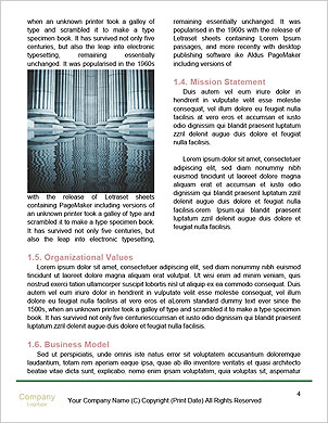 0000101562 Word Template - Page 4