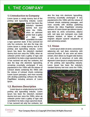 0000101566 Word Template - Page 3