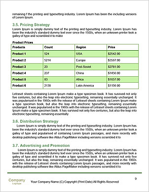 0000101575 Word Template - Page 9