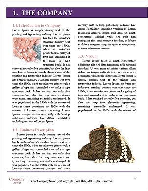 0000101576 Word Template - Page 3