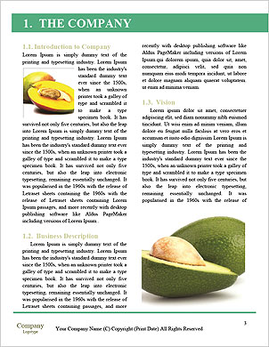 0000101582 Word Template - Page 3