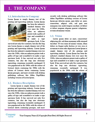 0000101584 Word Template - Page 3