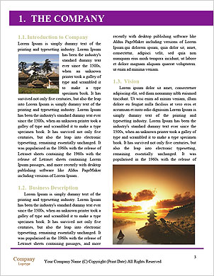 0000101585 Word Template - Page 3