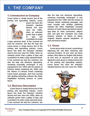 0000101599 Word Template - Page 3