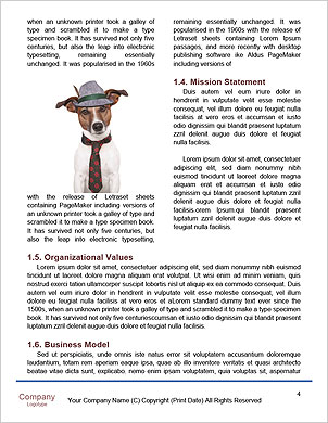 0000101599 Word Template - Page 4