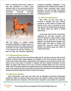 0000101611 Word Template - Page 4