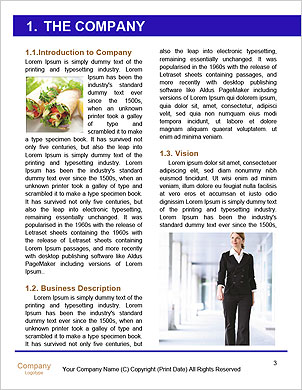 0000101619 Word Template - Page 3