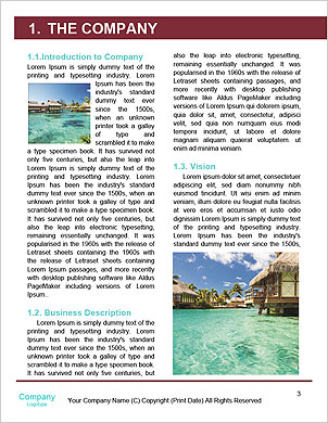 0000101630 Word Template - Page 3
