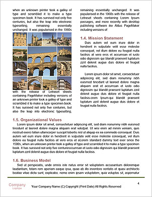 0000101633 Word Template - Page 4