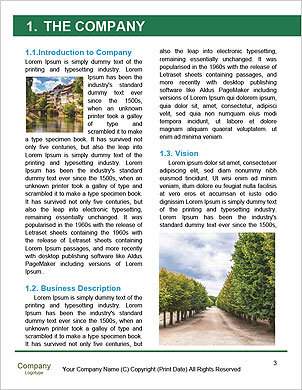 0000101634 Word Template - Page 3