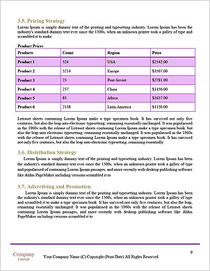 0000101640 Word Template - Page 9