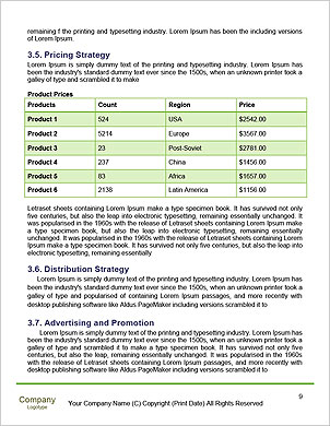 0000101644 Word Template - Page 9