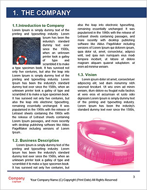 0000101645 Word Template - Page 3